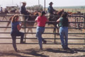 Hoffmann Ranch Branding, 2003 - After the Gather
